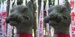 Kitsune05